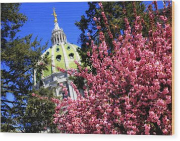Capitol In Bloom Wood Print by Shelley Neff