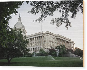 Capitol Lawn Wood Print by Greg Mimbs