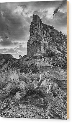 Wood Print featuring the photograph Caprock And Cactus by Stephen Stookey