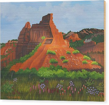 Caprock Canyon Texas Wood Print by Ruth  Housley