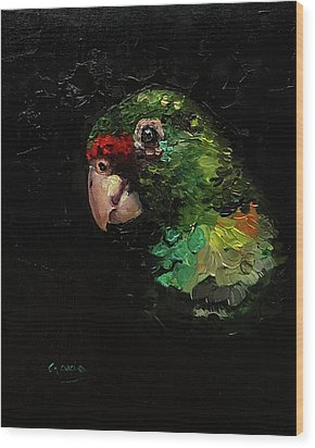 Captain The Parrot Wood Print by Janet Garcia