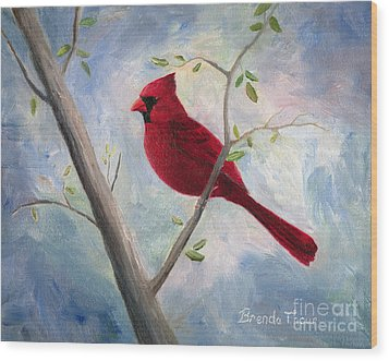 Cardinal Wood Print by Brenda Thour