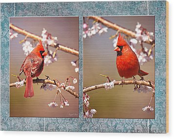 Cardinal Collage Wood Print by Angel Cher