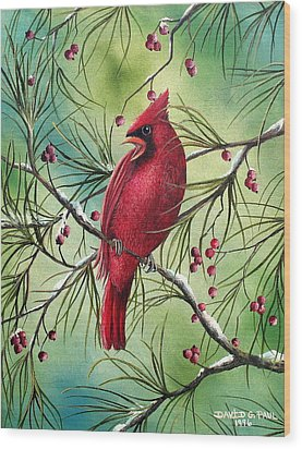 Cardinal Wood Print by David G Paul