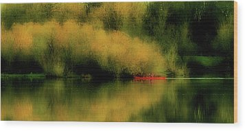 Carefree Afternoon Wood Print by Bonnie Bruno