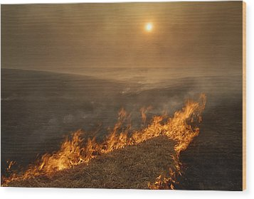 Carefully Managed Fires Sweep Wood Print by Jim Richardson
