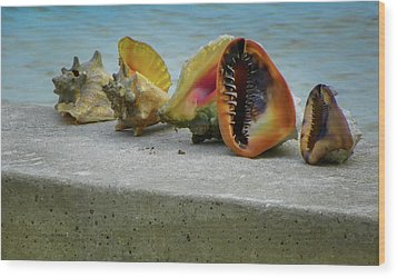 Wood Print featuring the photograph Caribbean Charisma by Karen Wiles