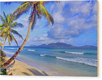 Caribbean Paradise Wood Print by Scott Mahon