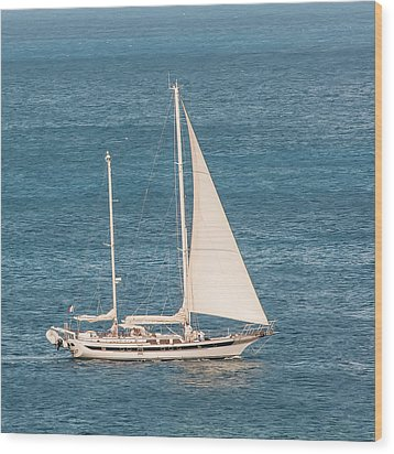 Wood Print featuring the photograph Caribbean Scooner by Gary Slawsky