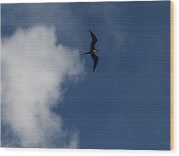 Caribbean Sky Wood Print