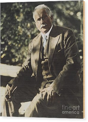 Carl G. Jung  Wood Print by Granger