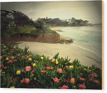Carmel Beach And Iceplant Wood Print by Joyce Dickens