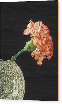 Carnation Wood Print by Laurie Paci