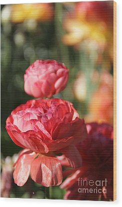 Carnival Of Flowers 01 Wood Print by Andrea Jean