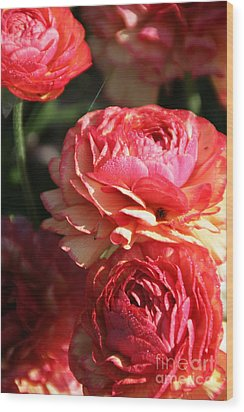 Carnival Of Flowers 02 Wood Print by Andrea Jean