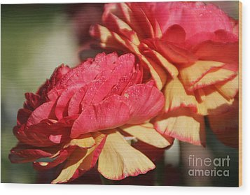 Carnival Of Flowers 05 Wood Print by Andrea Jean