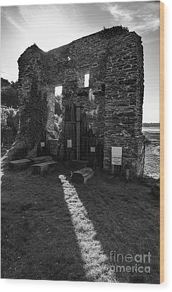 Wood Print featuring the photograph Photographs Of Cornwall Carnon Mine by Brian Roscorla