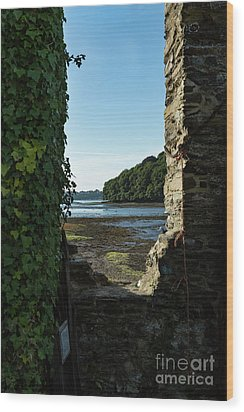 Wood Print featuring the photograph Photographs Of Cornwall Carnon Mine Window by Brian Roscorla