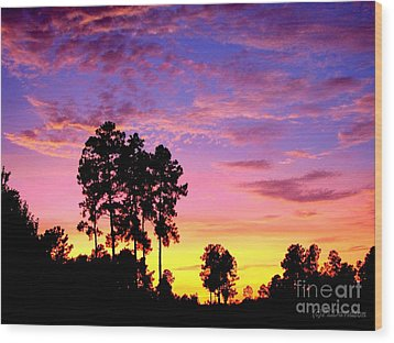 Carolina Pine Sunset Wood Print by Patricia L Davidson