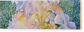 Carols-iris-ii Wood Print by Nancy Newman