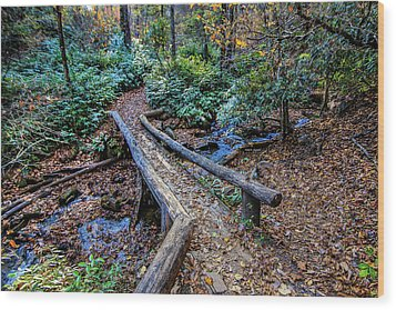 Carpet Of Leaves Wood Print by Dale R Carlson
