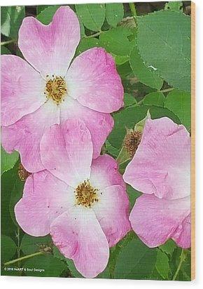 Carpet Roses Wood Print