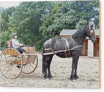 Carriage Driving Wood Print by David Syers