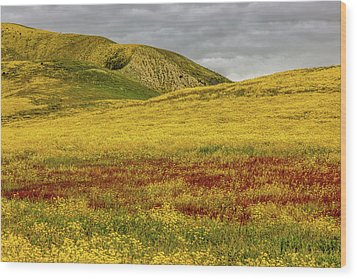 Wood Print featuring the photograph Carrizo  Plain Super Bloom 2017 by Peter Tellone
