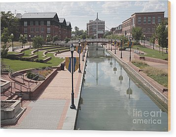 Carroll Creek Park In Frederick Maryland Wood Print
