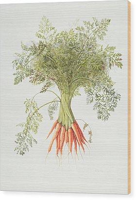 Carrots Wood Print by Margaret Ann Eden
