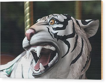 Carrousel Tiger Wood Print by Diane Merkle