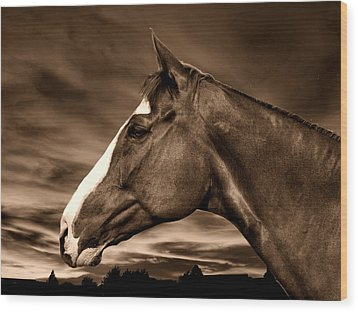 Carsen Sepia Wood Print by Irma BACKELANT GALLERIES