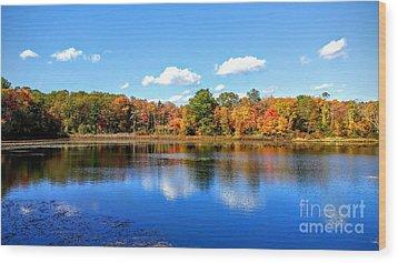 Carver Pond Bridgewater Ma Wood Print