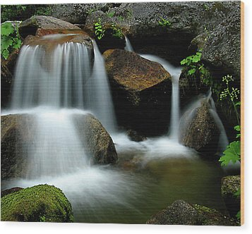 Cascade Creek Yosemite Wood Print