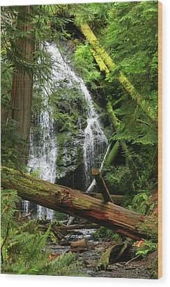 Cascade Falls - Orcas Island Wood Print by Art Block Collections