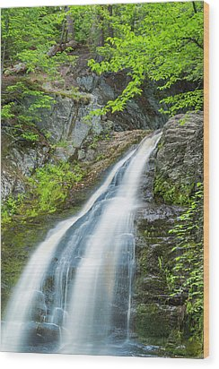 Wood Print featuring the photograph Cascade Waterfalls In South Maine by Ranjay Mitra