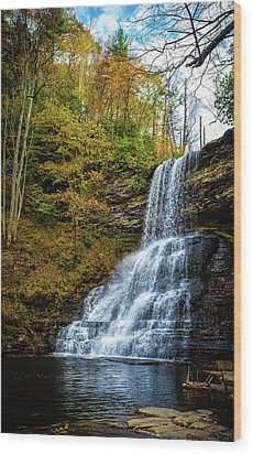 Cascades Lower Falls Wood Print