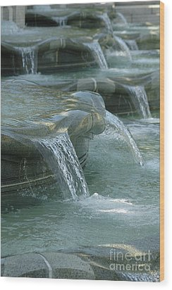 Cascading Fountain Wood Print