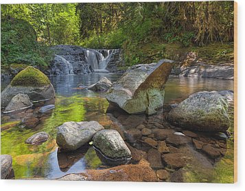 Cascading Waterfall At Sweet Creek Falls Trail Wood Print by David Gn