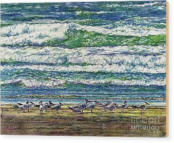 Caspian Terns By The Ocean Wood Print