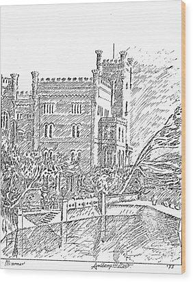 Castello Di Miramare Wood Print by Anthony Meton