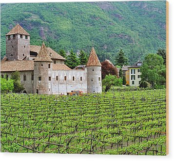 Castle And Vineyard In Italy Wood Print by Greg Matchick