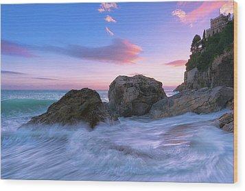 Castle Beach Wood Print
