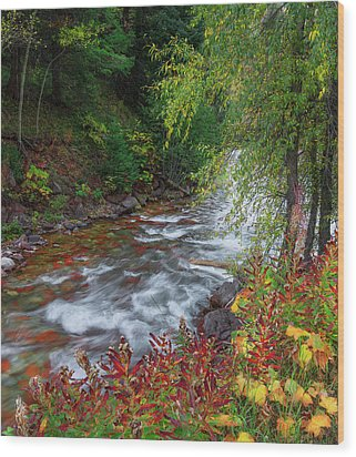 Wood Print featuring the photograph Castle Creek Beauty by Tim Reaves