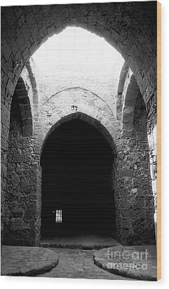 Castle Dungeon Wood Print by John Rizzuto