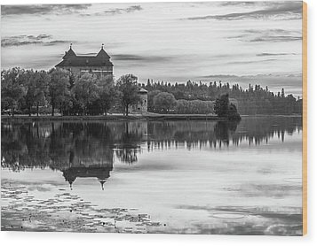 Castle In Black And White Wood Print