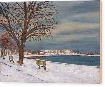Castle Island - Winter Wood Print