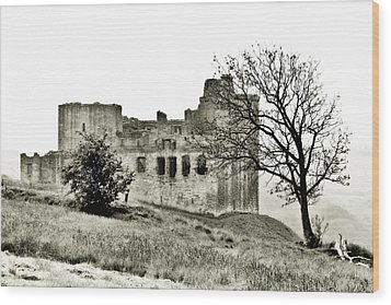 Castle On High Wood Print by Linde Townsend