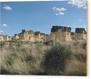 Castle Rock Badlands Wood Print by Keith Stokes