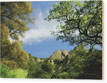 Castle Rock Wood Print by Donna Blackhall